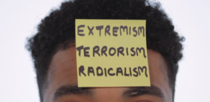 Implanting Terror: Taking a Different Approach to Understanding Radicalisation